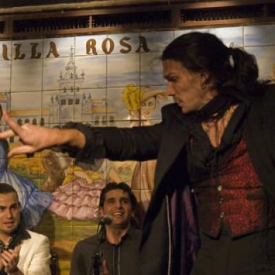 OgoTours Flamenco in Madrid